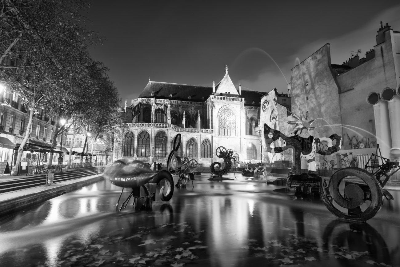 レトリーバー,パリ