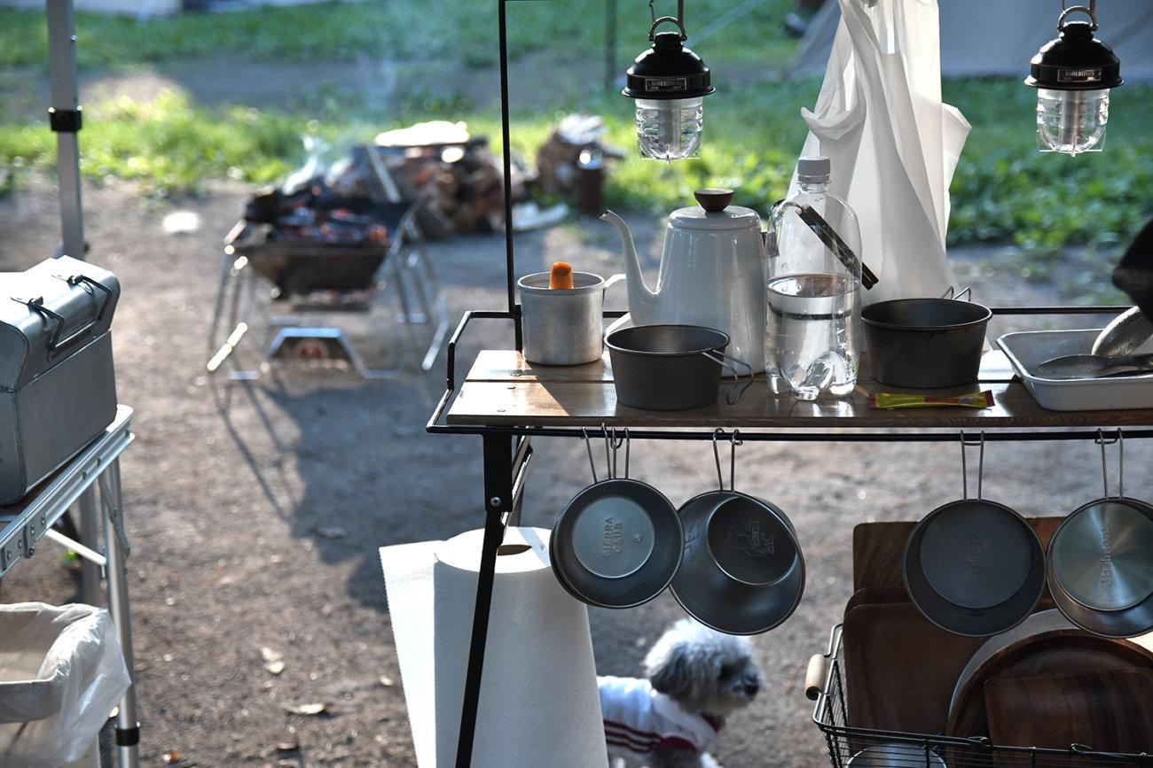 ゴールデンレトリーバー,キャンプ