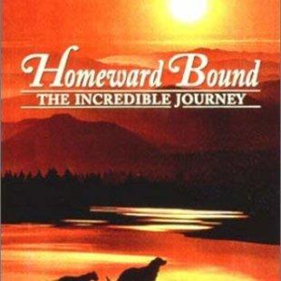 三匹荒野を行く・奇跡の旅・奇跡の旅2