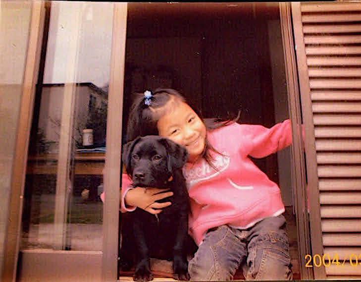 ラブラドールレトリーバーと飼い主の娘さん